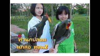 Download ตอนที่2 วิธีทำ นกอีลุ้มปลอม สำหรับ ต่อนกตูม ต่อนกอีลุ้ม Video