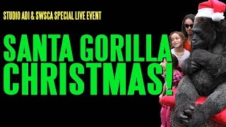 Download Santa Gorilla Christmas Video