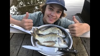 Download MONSTER Bream - Catch n Cook (Caught in CAST NET) Video