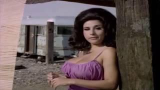 Download Common Law Cabin 1967 American film info Video