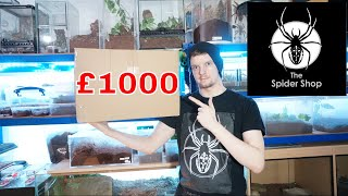 Download TheSpiderShop £1k Mystery Box - They Sent Me What?! Video