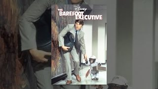 Download The Barefoot Executive Video