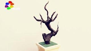 Download Hướng dẫn làm gốc Bonsai - Bonsai trunk by wires & paper tutorial [hoagiayshop] Video