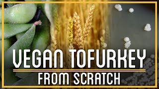 Download Thanksgiving Tofurkey From Scratch   How to Make Everything Video