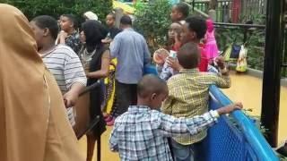Download SOMALI CHILDREN ARE TAKING OVER MALL OF AMERICA Video