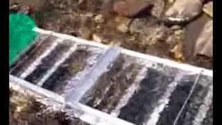 Download Como extraer oro de los rios Video