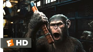 Download Rise of the Planet of the Apes (2/5) Movie CLIP - Prison Break (2011) HD Video