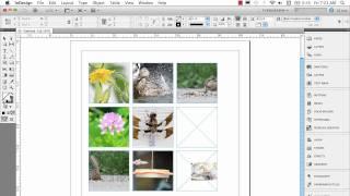 Download InDesign Multiple Frame Tips Video