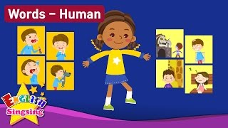 Download Kids vocabulary Theme ″Human″ - Action verbs, Body, Feel - Words Theme collection - Learn English Video