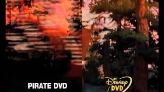 Download Disney DVD Anti-Piracy Promo (2005) Video
