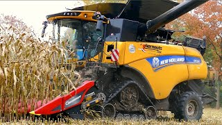 Download New Holland CR 10.90 on tracks | Corn and Corn Cob Harvest | Aernouts Tax Video