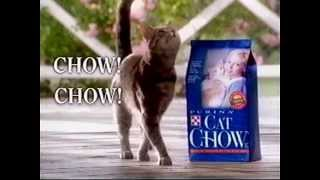 Download Purina Cat Chow Commercial 1997 Video