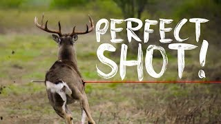 Download AWESOME MANAGEMENT BUCK HUNT Video