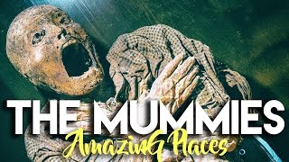 Download MEXICAN MUMMY MUSEUM | LAS MOMIAS DE GUANAJUATO Video