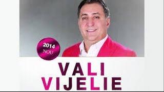 Download VALI VIJELIE - CUM E VIATA OMULUI Video