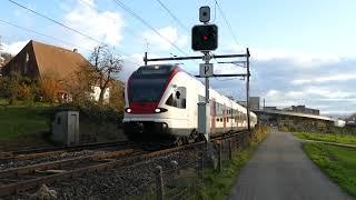 Download Zugverkehr an einem lauschigen Tag in Holderbank Video
