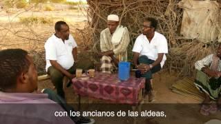 Download Somalia: apoyo a las comunidades durante conflictos prolongados Video