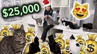 Download GIVING $25,000 TO CATS FOR CHRISTMAS! Video