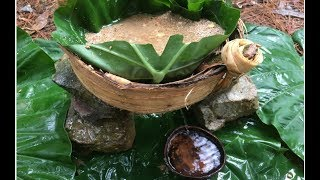 Download Primitive Technology: Filter Dirty Water Video