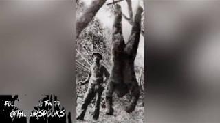 Download Terrifying BIGFOOT Sightings Caught on Camera- Bigfoot Videos Video