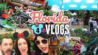 Download Disney vlog 2018 | Disney World and Universal : Day 3 - a rainy day at Animal Kingdom and Ohana Video