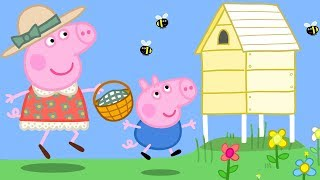 Download Peppa Pig Official Channel | Peppa Pig's Spring Outdoor Fun! Video