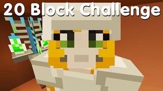 Download Minecraft PS4 - 20 Block Challenge - An Amazing Idea (23) Video
