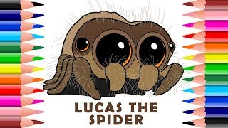 Download ✍ How To Draw And Colour Lucas The Cutest Spider Video