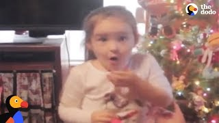 Download Girl Gets Exactly What She Wanted For Christmas | The Dodo Video