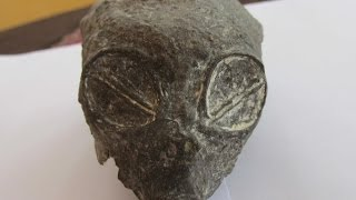 Download What Is This Strange Skull Like Specimen In Peru? Video
