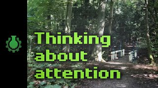 Download Thinking About Attention - Walk with Me Video