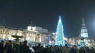 Download Trafalgar Square Christmas Tree Lighting Ceremony London Video