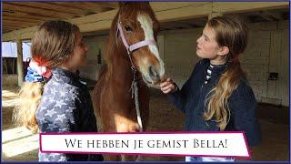 Download Naar Belletje onze vorige pony in Duitsland! -weekvlog- * Hart voor Paarden * Video