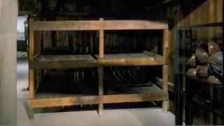 Download Auschwitz Survivors Tell Their Stories Video