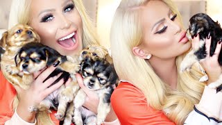 Download MEET MY PUPPIES! | Gigi Video