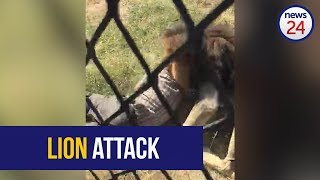 Download WATCH: Game reserve owner hospitalised after being mauled by a lion Video