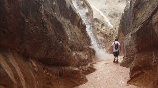 Download Flash Flood Caught on Camera! Little Wild Horse Slot Canyon Video