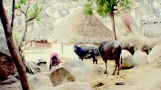 Download VILLAGE LIFE IN KARNATAKA (BANJARA/LAMANI TANDRA) Video