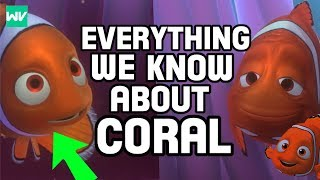 Download Coral: Who Is Nemo's Mother? - Pixar Perception Video