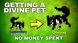 Download [RotMG] Getting a Divine Pet | No Money Spent + Gameplay Video