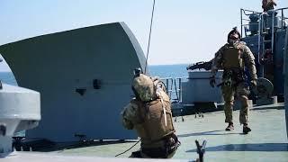 Download «Сі Бриз 2018». Прикордонники відпрацювали висадку з гелікоптера на судно-порушник Video