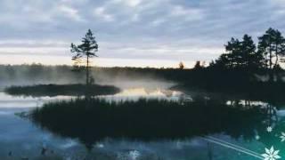 Download Nature in Estonia - visitestonia Video