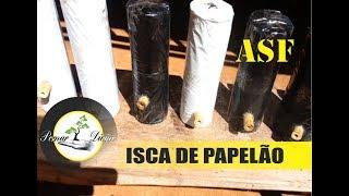 Download ISCA DE PAPELÃO PARA CAPTURA DE ABELHAS (ASF) Video