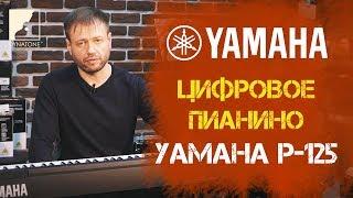 Download Обзор цифрового пианино YAMAHA P-125 Video