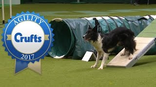 Download Agility Championship Final | Crufts 2017 Video