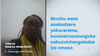 Download Tabeth Mabiza-Nhakaniso, Zimbabwe, reading article 3 of the Universal Declaration of Human Rights Video