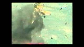 Download Stinger in Afghanistan Video