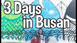 Download 🇰🇷Seoul to Busan | Busan Travel Guide (South Korea travel) | 부산여행ㅎ Video