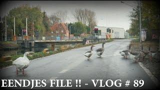 Download EENDJES FILE !! - VLOG #89 Video