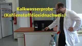 Download Kalkwasserprobe Kohlenstoffdioxidnachweis Video